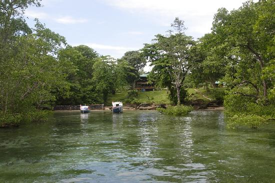 Bunaken SeaGarden Resort: View from the sea