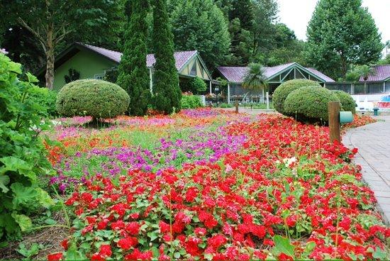Unique Garden Hotel & Spa: As flores são impecaveis.