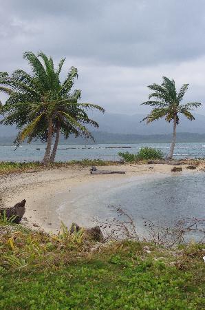 Dolphin Lodge Uaguinega: la spiaggia dove simao stati accompagnati in barca