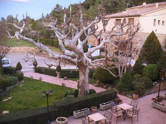 Hotel la Masia del Cadet: tree in front