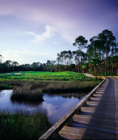 Hammock Dunes Creek Course: Creek 15th Hole bridge