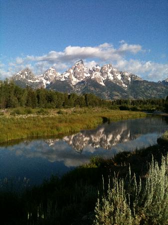 Wildflower Lodge at Jackson Hole: Beautiful Tetons