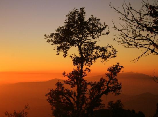 Dunagiri Retreat: The hues of morning