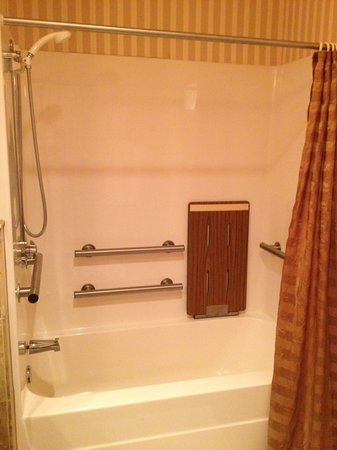 Celebrity Hotel: Substantial shower safety apparatus in room 104