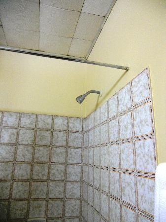 Monique's Guest House: Bathroom