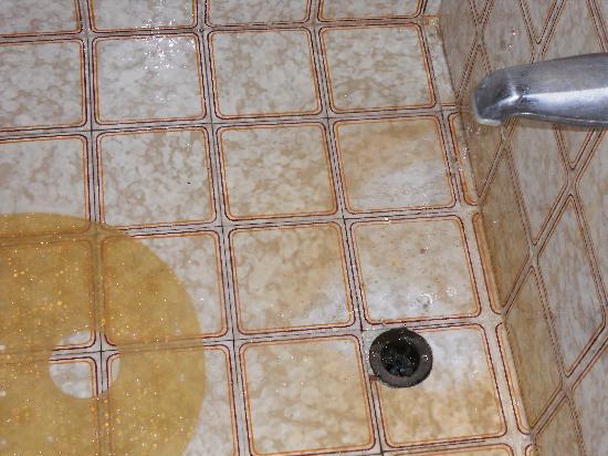 Monique's Guest House: Bathroom floor
