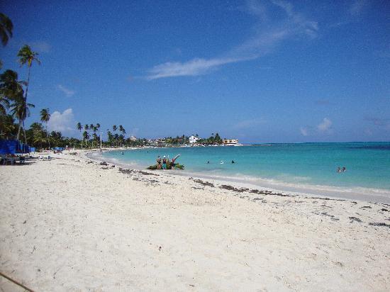 Decameron Los Delfines: Playa del Centro