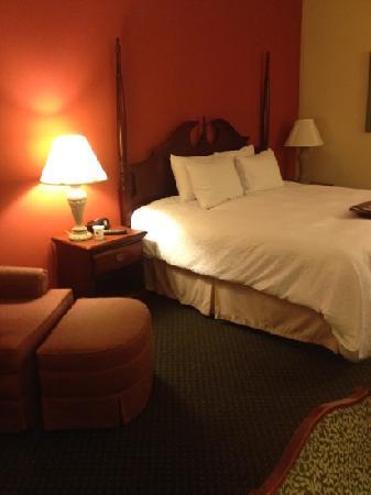 Hampton Inn & Suites Nashville - Green Hills : bed