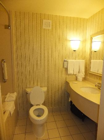 Hilton Garden Inn Kennett Square: Bathroom
