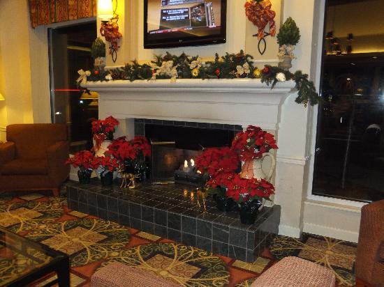 Hilton Garden Inn Kennett Square : Lobby