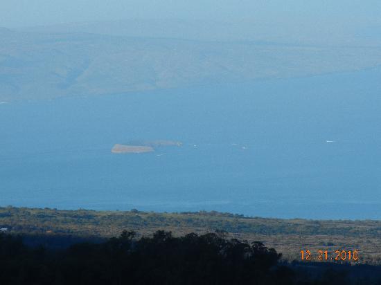 Paia, Havaí: Molikini