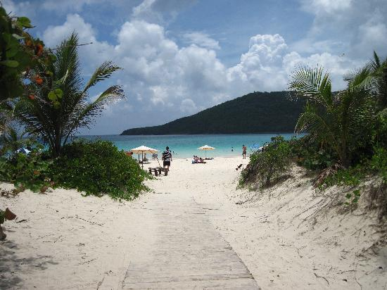 Flamenco Beach: Paradise...