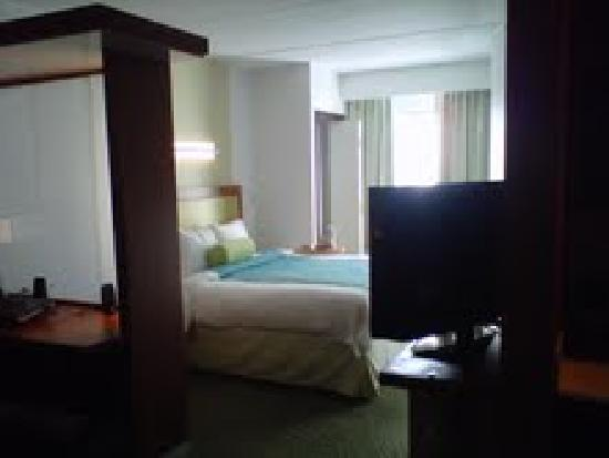 SpringHill Suites San Antonio Downtown/Alamo Plaza: king bed