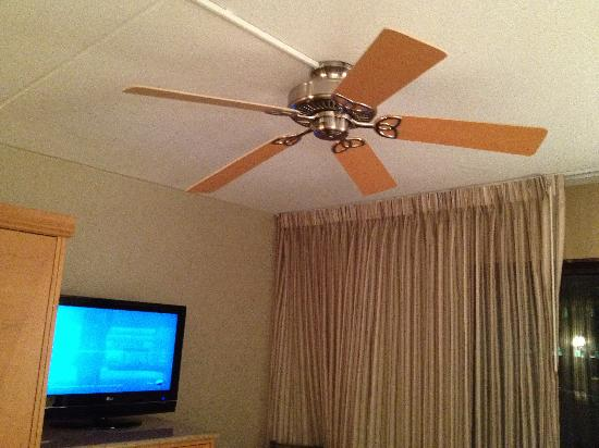 Embassy Suites by Hilton Indianapolis - Downtown: Fan in the room