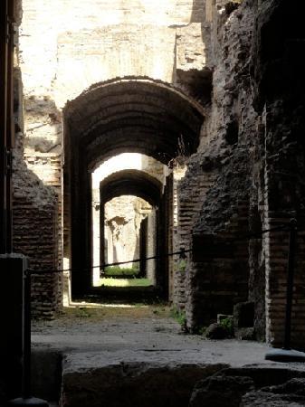 Lucia Pompeii Guide Tours: underground at the Coliseum