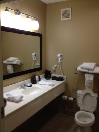 BEST WESTERN PLUS Gadsden Hotel & Suites : very clean bathroom