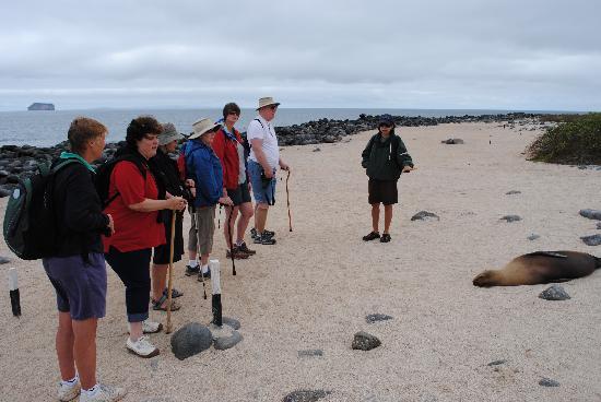 EQ Touring Company - Day Tours: North Seymour Island
