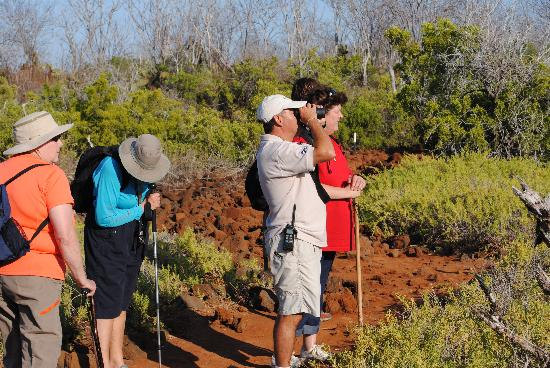 EQ Touring Company - Day Tours: Floreana Island