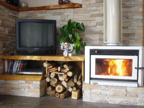 Panorama Heights Bed and Breakfast: Snuggle up with a cuppa in front of this fireplace!