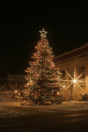 Downtown Christmas Tree In Traverse City