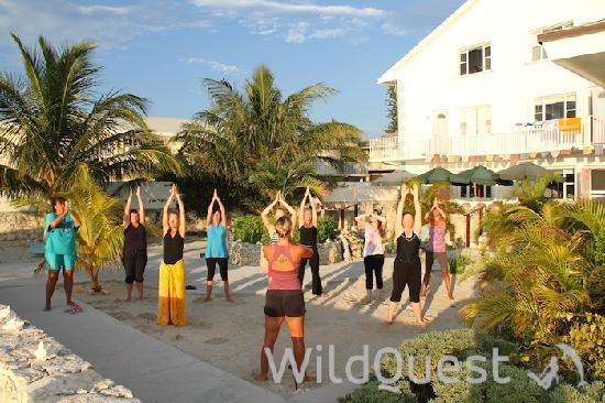 WildQuest: Morning Exercise