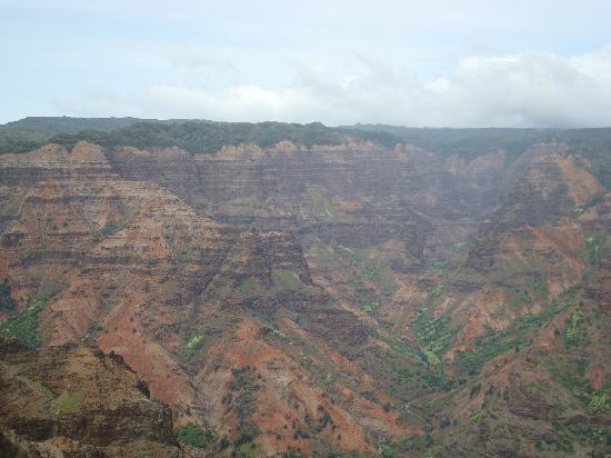 Grand Cayon Of The Pacific Picture Of Waimea Canyon