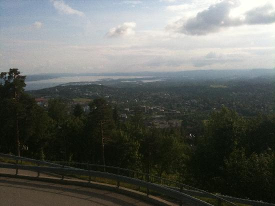 Scandic Holmenkollen Park: The view from the hill