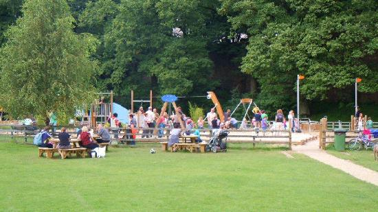 Fitz Guest House and Cafe: Fitz Park Play Area