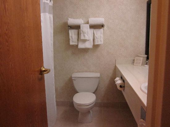 Holiday Inn Express Lethbridge: Bathroom
