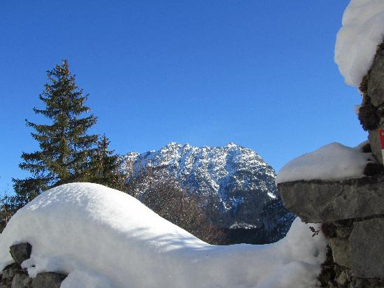 Burgenwelt Ehrenberg : Make sure you walk up to the old castle ruins, even in snow