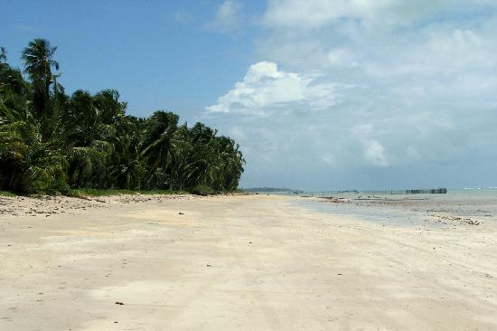 Xareu Beach: A REALLY unspoiled and deserted beach just south of the Grand Oca Resort