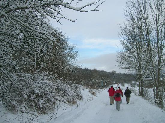Landhaus Kehl : Winter in der Rhön