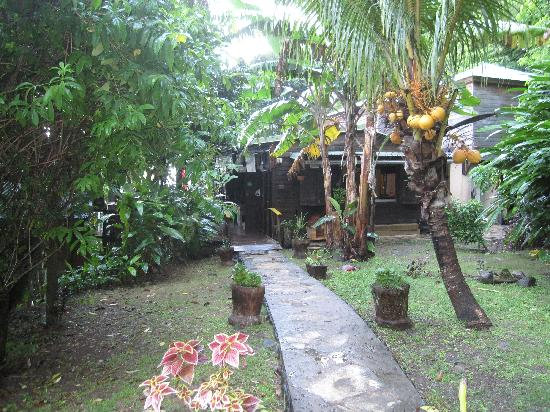 Tainos Cottages : the path to the dining area