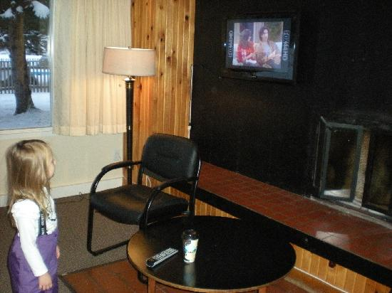 Auberge Mont-Habitant : Fireplace and TV