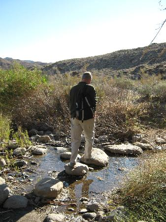 Agua Caliente Indian Canyons: Cross Andreas creek multiple times while hiking