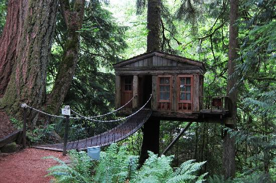 Treehouse Point: Temple of the Blue Moon - walk across swaying foot bridge to enter