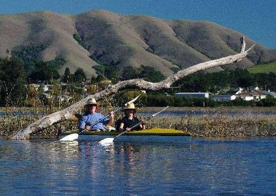 Inverness Secret Garden Cottage: kayaking on Tomales Bay