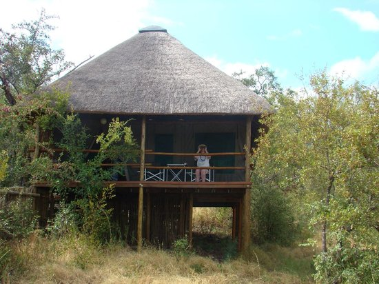 Muweti Bush Lodge: Overlooking a water hole