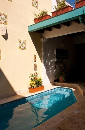Hotel Casa Amani: Wall Pool
