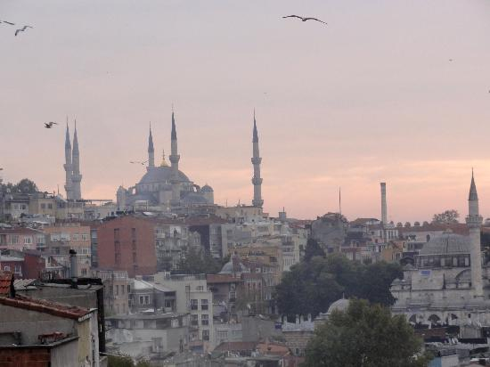 Ascot House: View of the Blue Mosque from apartment terrace