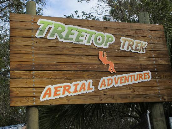 Treetop Trek: Entrance to zipline