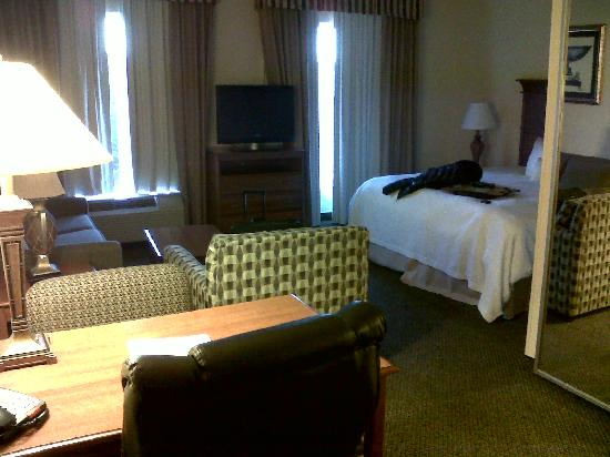 Hampton Inn & Suites Birmingham-Hoover-Galleria : Shot of the hotel room