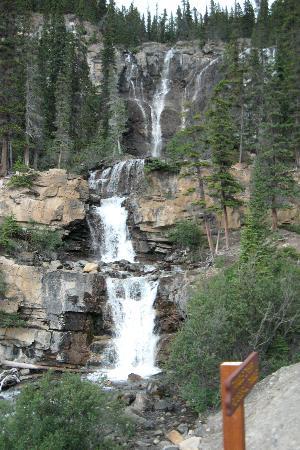 Athabasca Falls--View 1
