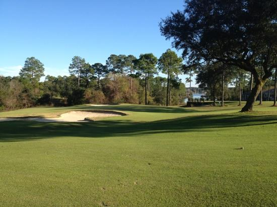 Marcus Pointe Golf Club: beautiful shot overlooking #3 green, the picturesque #2 tee box and Bayou Marcus