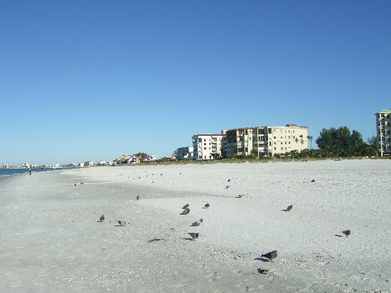 Treasure Bay Resort & Marina: the beach