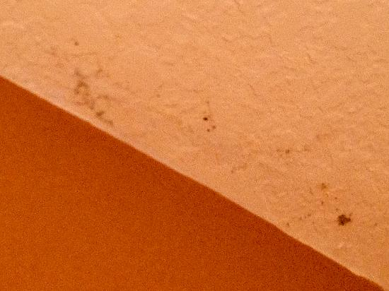 Mariposa Inn and Suites: Mold on bathroom ceiling section 1