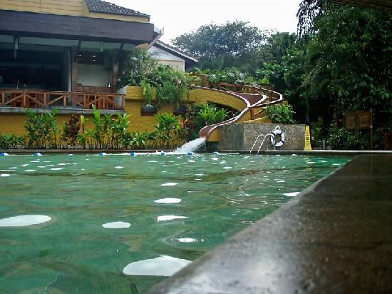 Tabacon Grand Spa Thermal Resort: pool bar