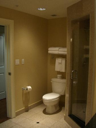 Park Place Inn: Walk-in shower
