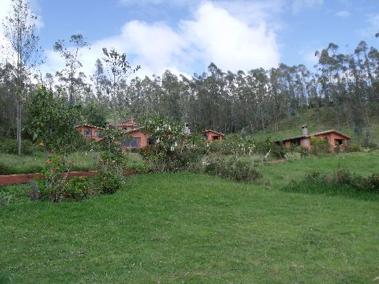 Ali Shungu Mountaintop Lodge: View of hillside property