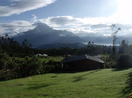 Ali Shungu Mountaintop Lodge: Patio view